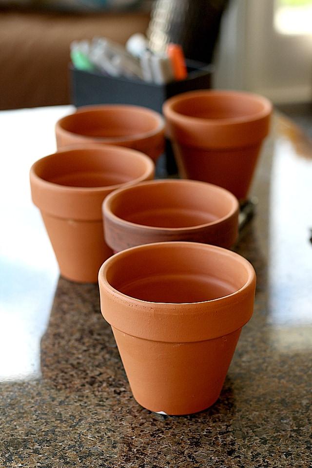 dirt bowls