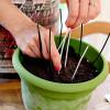 Oreo Dirt Cake Recipe & Birthday Party Recap