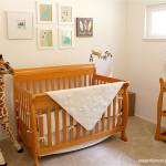 Coed Nursery Ideas