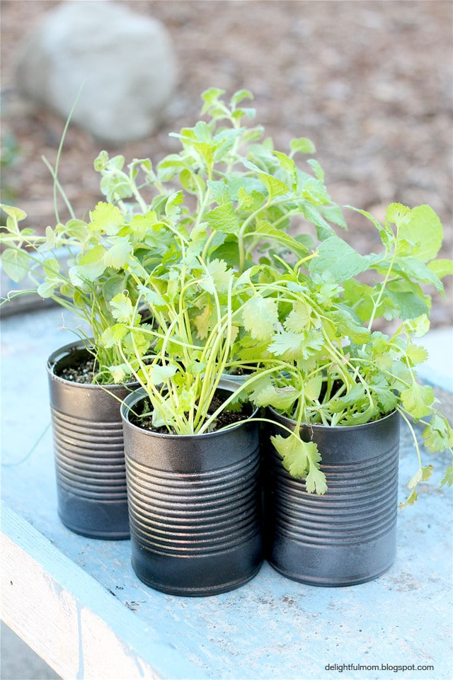 homemade herb planters
