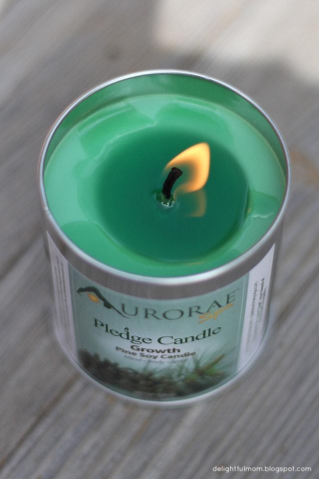 Aurorae soy candle