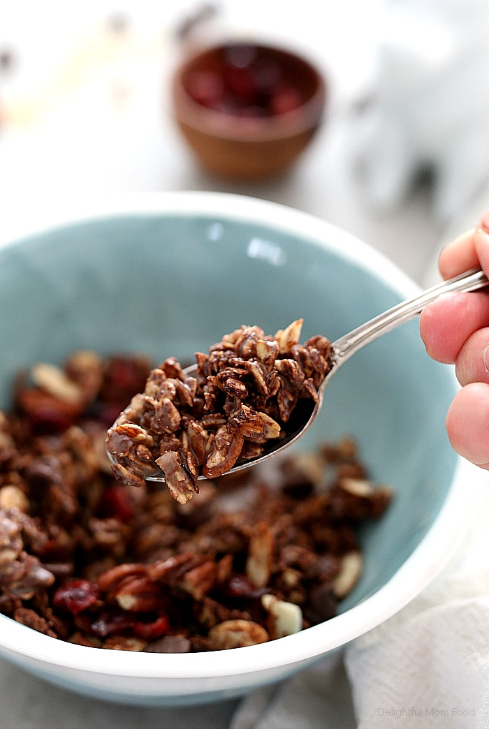 Transform mornings with this healthy chocolate granola recipe! Add your favorite nuts and dried fruit to this chocolate granola such as tangy dried cherries, chocolate chip morsels and pecans for a dreamy morning treat (vegan and gluten-free)!  #chocolate #granola #recipe #healthy #glutenfree #easy #vegan | recipe at delightfulmomfood.com