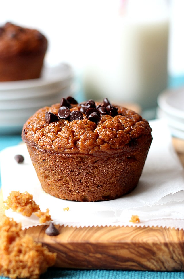 Pumpkin Muffins Recipe made with Greek yogurt, flourless and Grain-free! Delicious, easy and so healthy have to make this now!!!