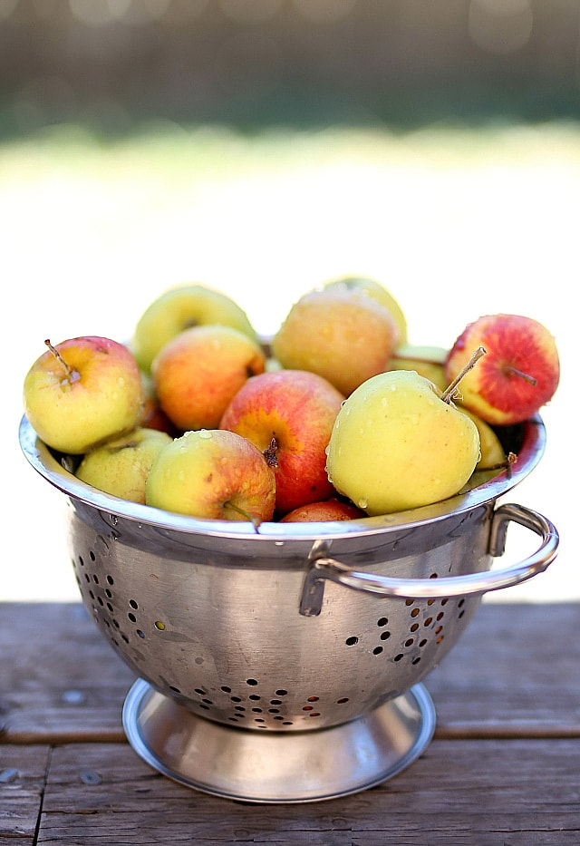 apples rinsed and drained