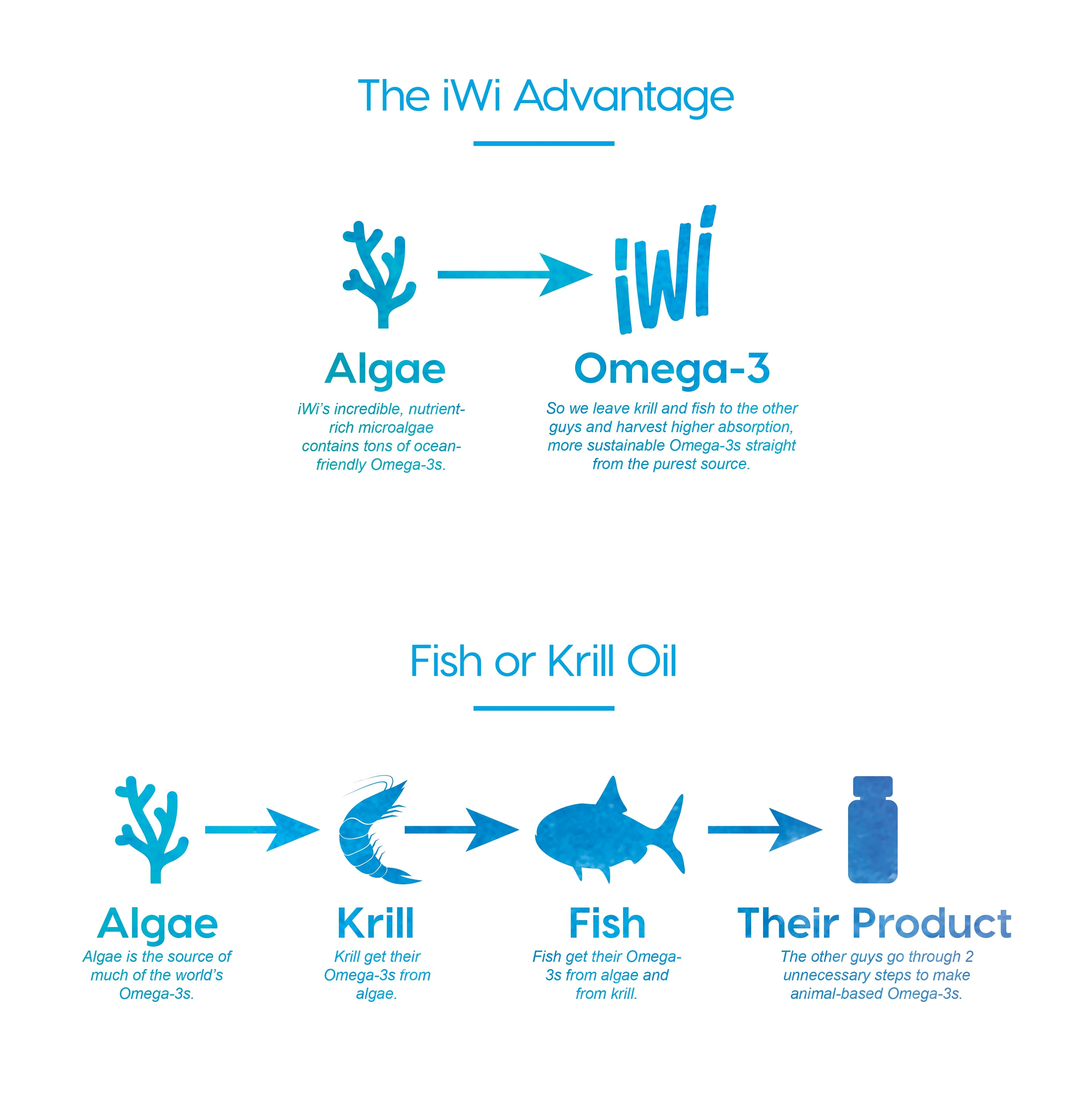 sustainable omega 3