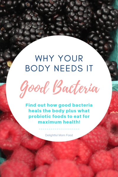 Good bacteria and why your body needs it! Find out how good bacteria heals the body plus what probiotic foods to eat for maximum health! Probiotics are a beneficial bacteria with valuable benefits that aid to support the body, brain and second brain  -  the gut! #goodbacteria #probiotics #health #recipes | Delightful Mom Food