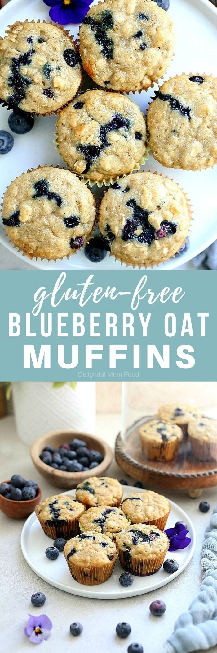 The fluffiest gluten free blueberry muffins recipe! These healthy and easy blueberry oat muffins are seriously the best gluten-free muffins! They are also dairy-free and packed with fiber, juicy blueberries, rolled oats and a hint of lemon zest. #glutenfree #muffins #recipe #healthy #oats #oatmeal #breakfast #brunch #snack #baking #dairyfree #blueberry #blueberries #delightfulmomfood | Recipe at Delightful Mom Food