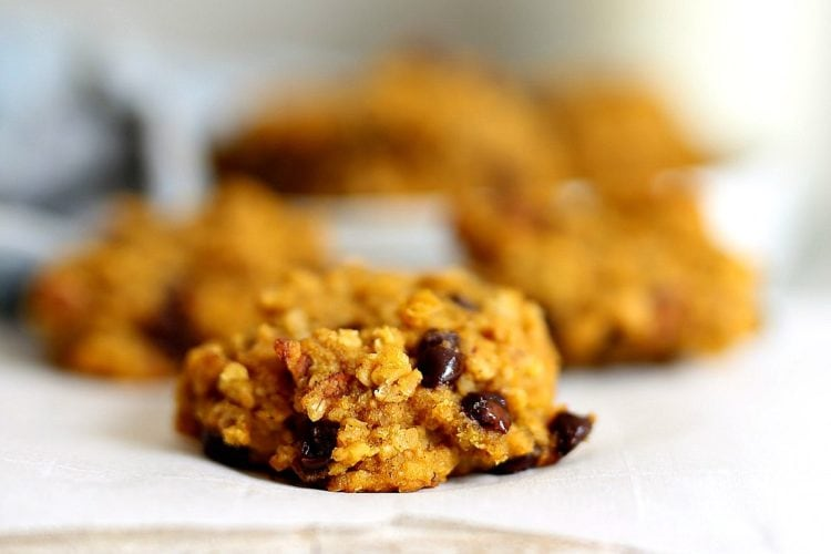 gluten free pumpkin breakfast cookies made with oats and chocolate chips
